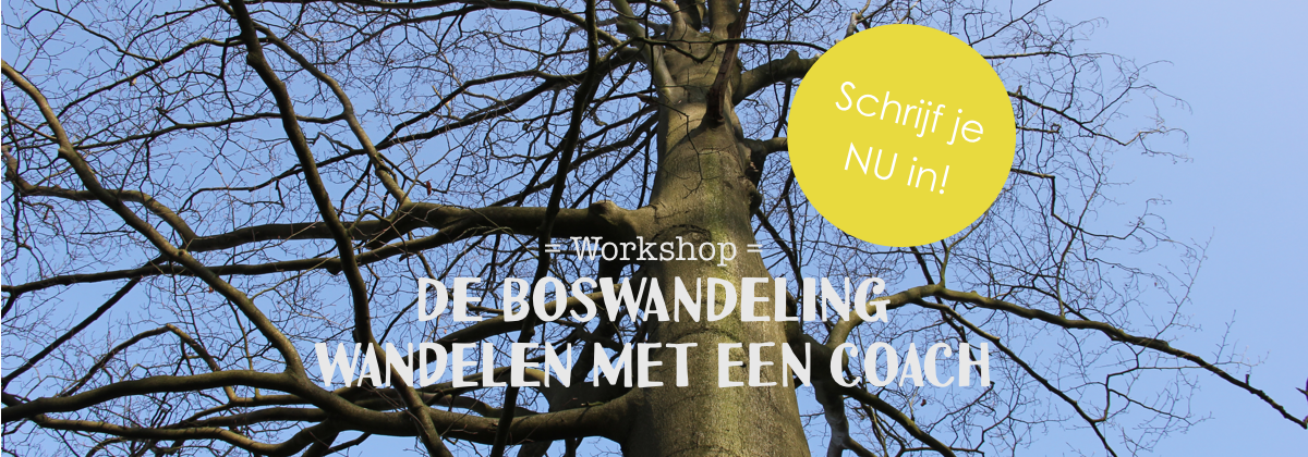 iamgroots header_wandeling met een coach 10 september